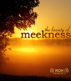 Meekness – What It Is and Isn't | The Romantic Vineyard