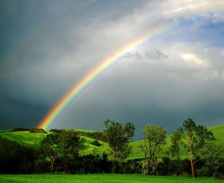 Rainbow's End Date Night (1/2)