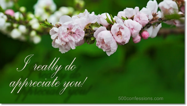 appreciate-you