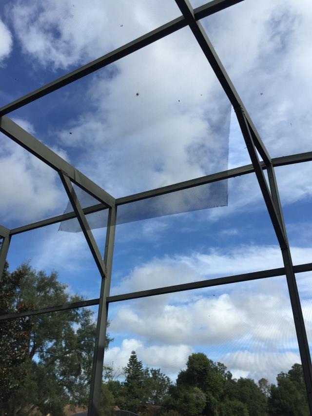 Screen roof