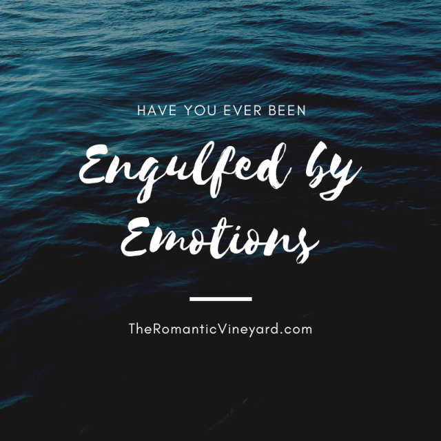 I have always been emotional. I cry at movies. I cry at weddings. I have even been known to cry at a funeral of someone whom I had never met. I put myself in another's place and imagine what it must feel like for them. This is great for showing empathy and weeping with those who weep. But at times I feel engulfed by it.