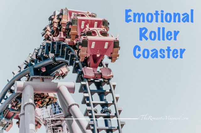 I hate roller coasters. They throw off your equilibrium and make you have to regain footing once you're back on solid ground. Not to mention the unexpected twists, turns and drops along the way. I'd rather not take part, thank you very much.  This past week has been an emotional roller coaster for me. All the above applies.  But unlike choosing to buy a ticket to ride or not, I found myself on this one unaware until the first drop.