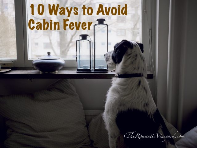 10 Ways To Avoid Cabin Fever