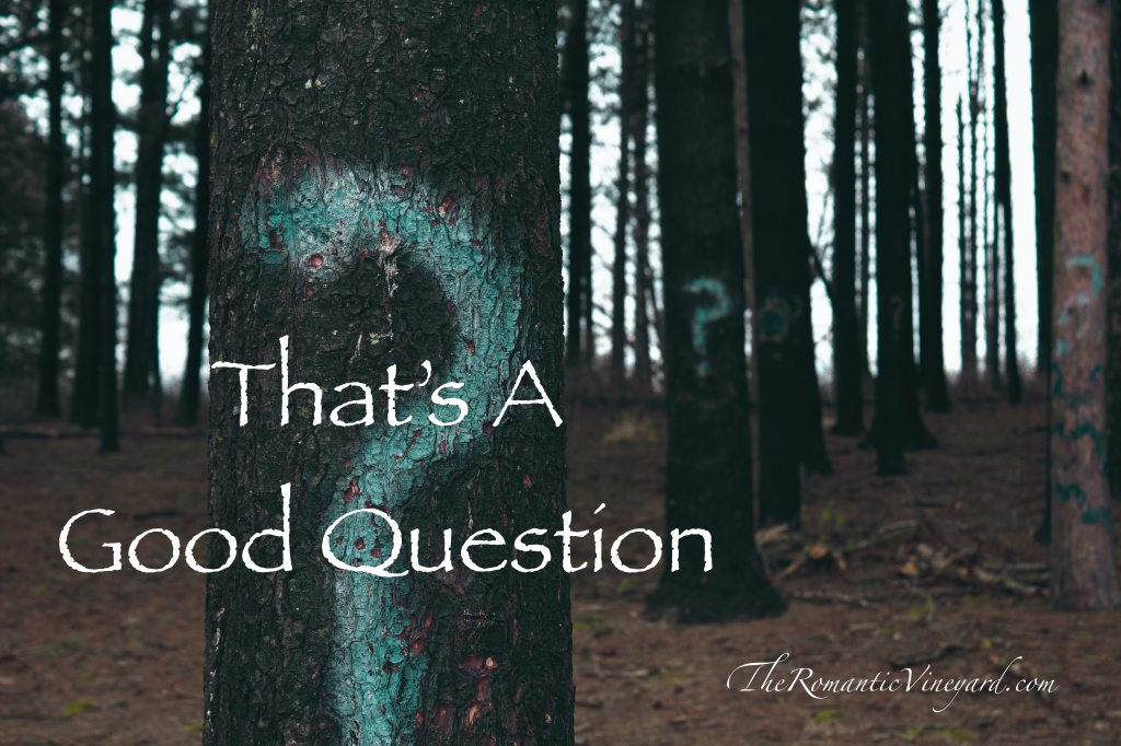 Questions, good questions, help a marriage grow strong and mature.